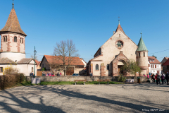 DSC_1237-Avolsheim