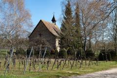 DSC_1264-Avolsheim