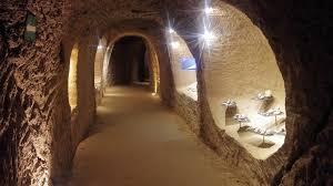Croisière déjeuner sur la Marne et visite d'une surprenante cave de coquillages